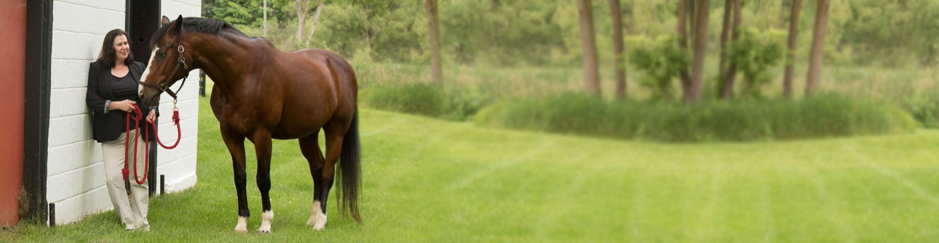 danielle-horse